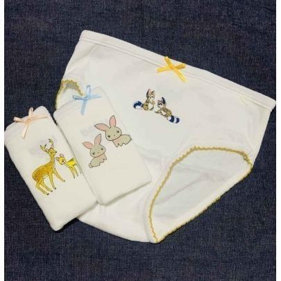 Calzones para Niña con Dibujos de 100% Algodón Talla 6-7 Cantel