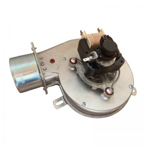 Extractor de humos Bronpi Ø80 (CAF15Y-016BF-00)
