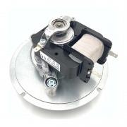Motor extractor de humos Ecoforest versión 2012
