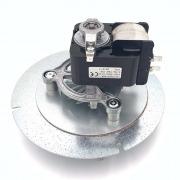 Motor extractor de humos Ecoforest 100 Watios