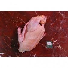 Pato entero bio 3,5kg Ecoviand