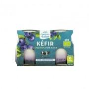 Kefir de vaca con aranadanos bio 2x125gr El Cantero de Letur