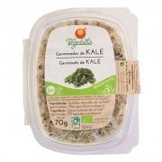 Germinado de Col Kale Bio 70gr Vegetalia