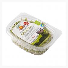 Germinado de Brócoli 70gr Vegetalia