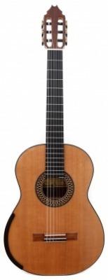 Fernando Mazza - Australian Model - Cedar 2021