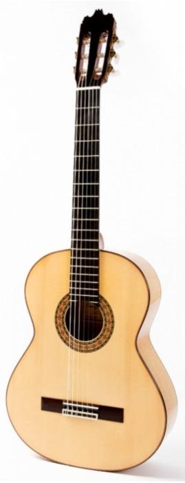 Raimundo 160 Flamenco