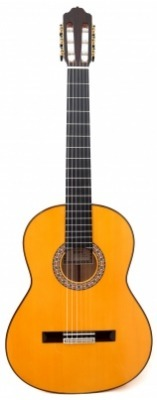 Flamenco Guitar Esteve - 6F