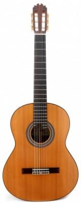 Jose Antonio Lagunar - Conservatorio 640 Cedar