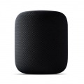 APPLE ALTAVOZ HOMEPOD SPACE GREY 7 ALTAVOCES/SIRI/VOICE OVER/HOMEKIT/WIFI/BT MQHW2Y/A