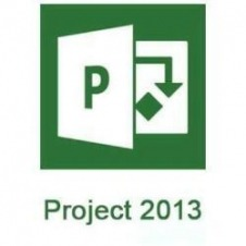 Microsoft Project Server - licencia y Software Assurance - 1 usuario CAL