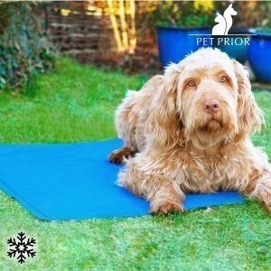 Colchoneta Refrescante para Mascotas Pet Prior (65 x 50 cm)
